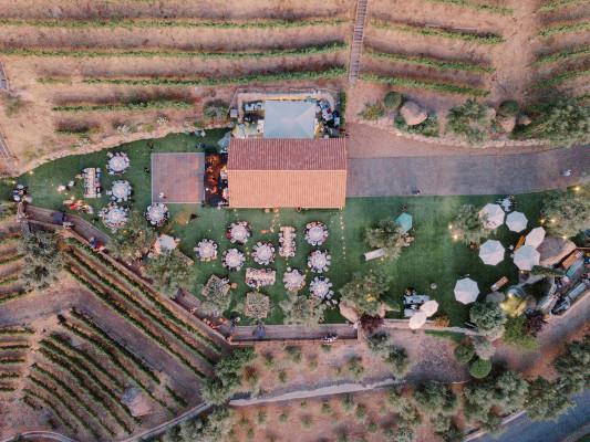 Cielo Farms