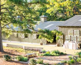 Vinewood Plantation
