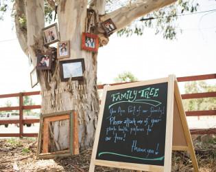 The Grove at Suzie's Farm