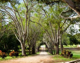 Dillingham Ranch