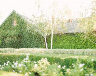 Ponte Winery & Vineyard Inn