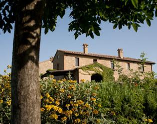 Borgo Finocchieto