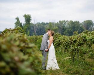Willow Harbor Vineyards