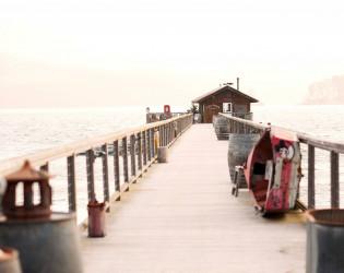 Nick's Cove