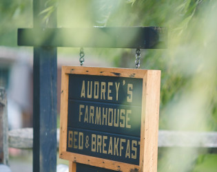 Audrey's Farmhouse + The Greenhouses