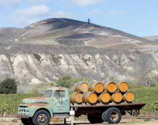 Sanford Winery & Vineyards