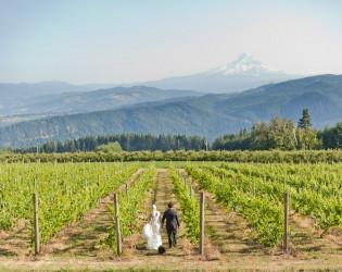 Gorge Crest Vineyards