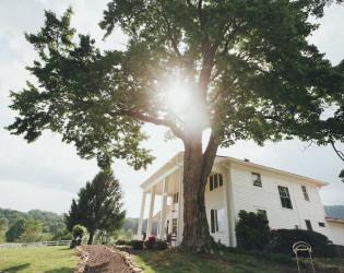 Mountain Laurel Farm