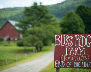 Bliss Ridge Farm