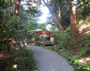 Bodega Bay Secret Gardens