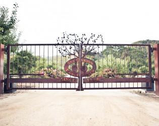 See Canyon Fruit Ranch