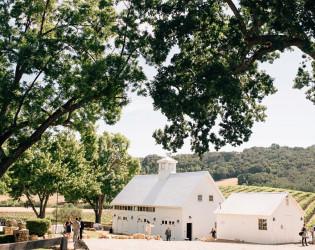 HammerSky Vineyards