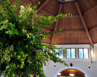 Cape Fear Botanical Garden