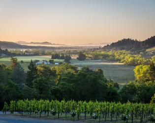 Sbragia Winery