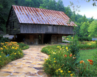 The Lily Barn