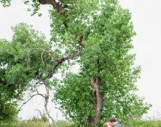 Cottonwood Glen at Kiowa Creek