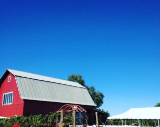 Vineyard at Porter Central