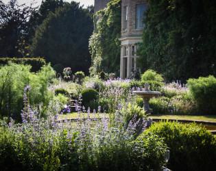 Narborough Hall Gardens