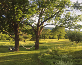 Spruceton Inn: a Catskills Bed and Bar