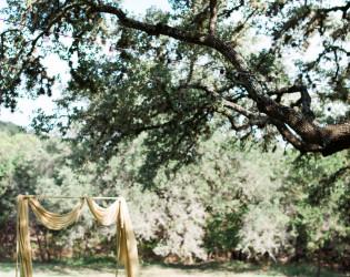 The Ivory Oak