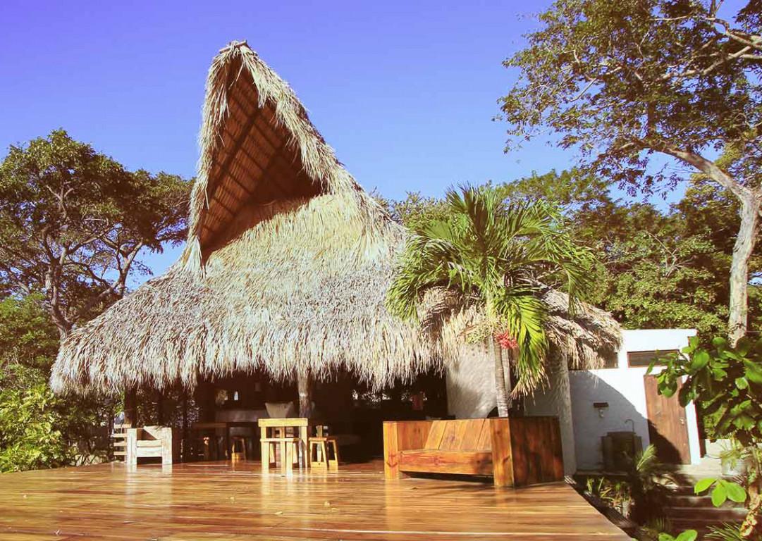 Картинки по запросу Buena Vista Surf Club