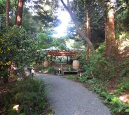 Bodega Bay Secret Gardens