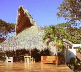 Buena Vista Surf Club