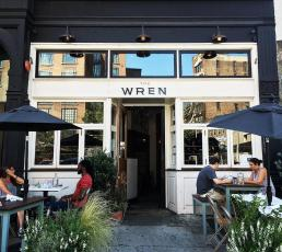 The Wren Downstairs