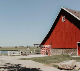 The Rustic Rose Barn