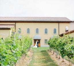 Villa Bellezza Winery & Vineyards