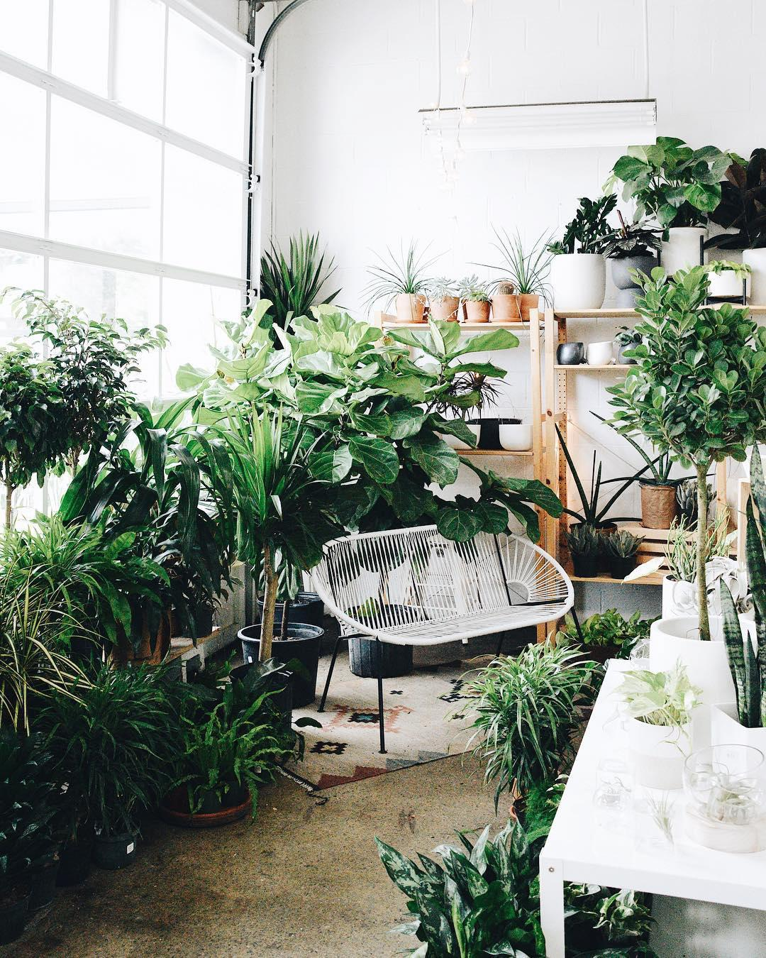 30 of the Cutest Plant Shops Around the World House Plant Shops Near Me on attractions near me, beauty salon near me, fishing near me, swimming pool near me, gardens near me, factories near me, sauna near me, beach near me, malls near me, lounges near me,