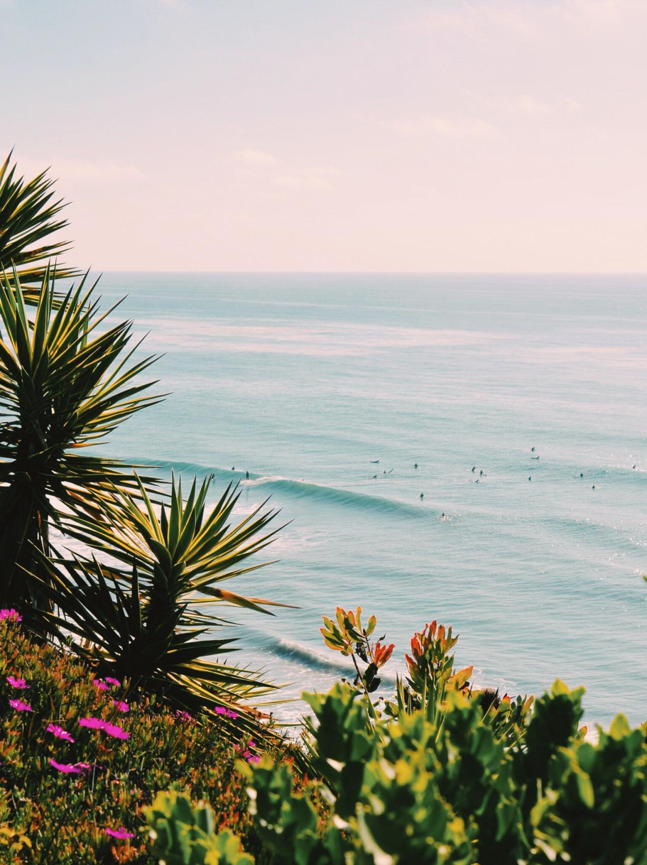 Guide To 36 Can T Miss Spots In Encinitas
