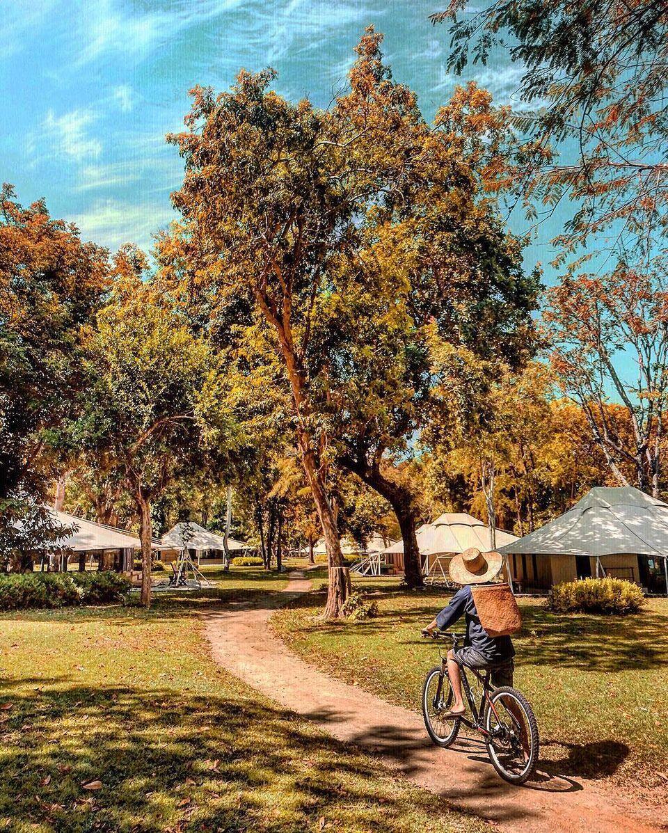 浪漫的野外露营 帐篷酒店阿曼瓦纳