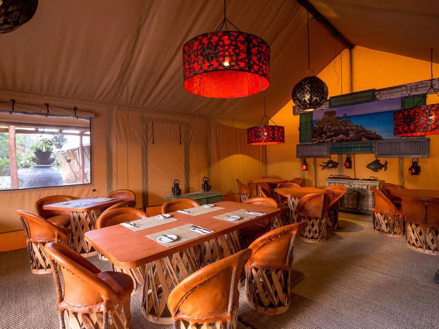 浪漫的野外露营 帐篷酒店墨西哥里维埃拉玛雅宁静营