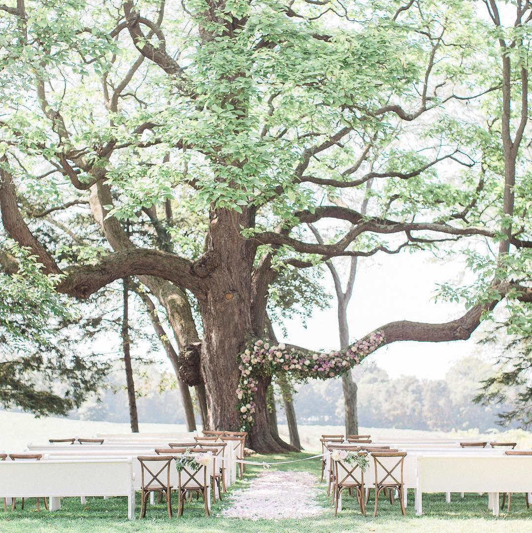 The Ultimate Guide To Enchanting Wedding Venues In Michigan