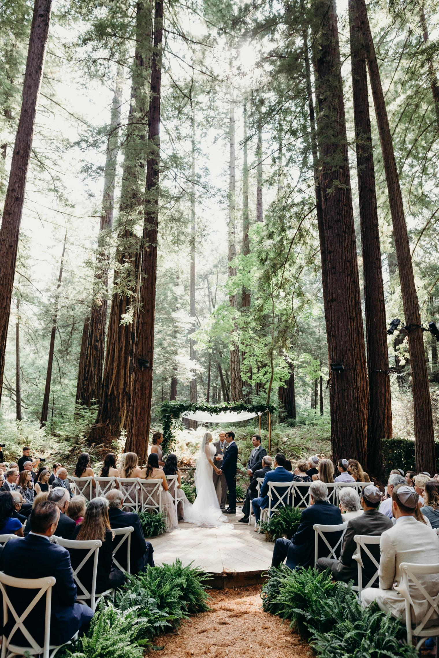 Magical Forest Wedding Venues You Ll