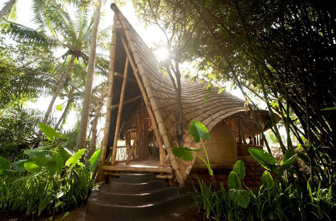 贝壳酒店帐篷 贝壳酒店帐篷客酒店 在巴厘岛的丛林中举办瑜伽静修会