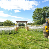Bridle Barn and Gardens