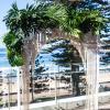 Beachside Dojo